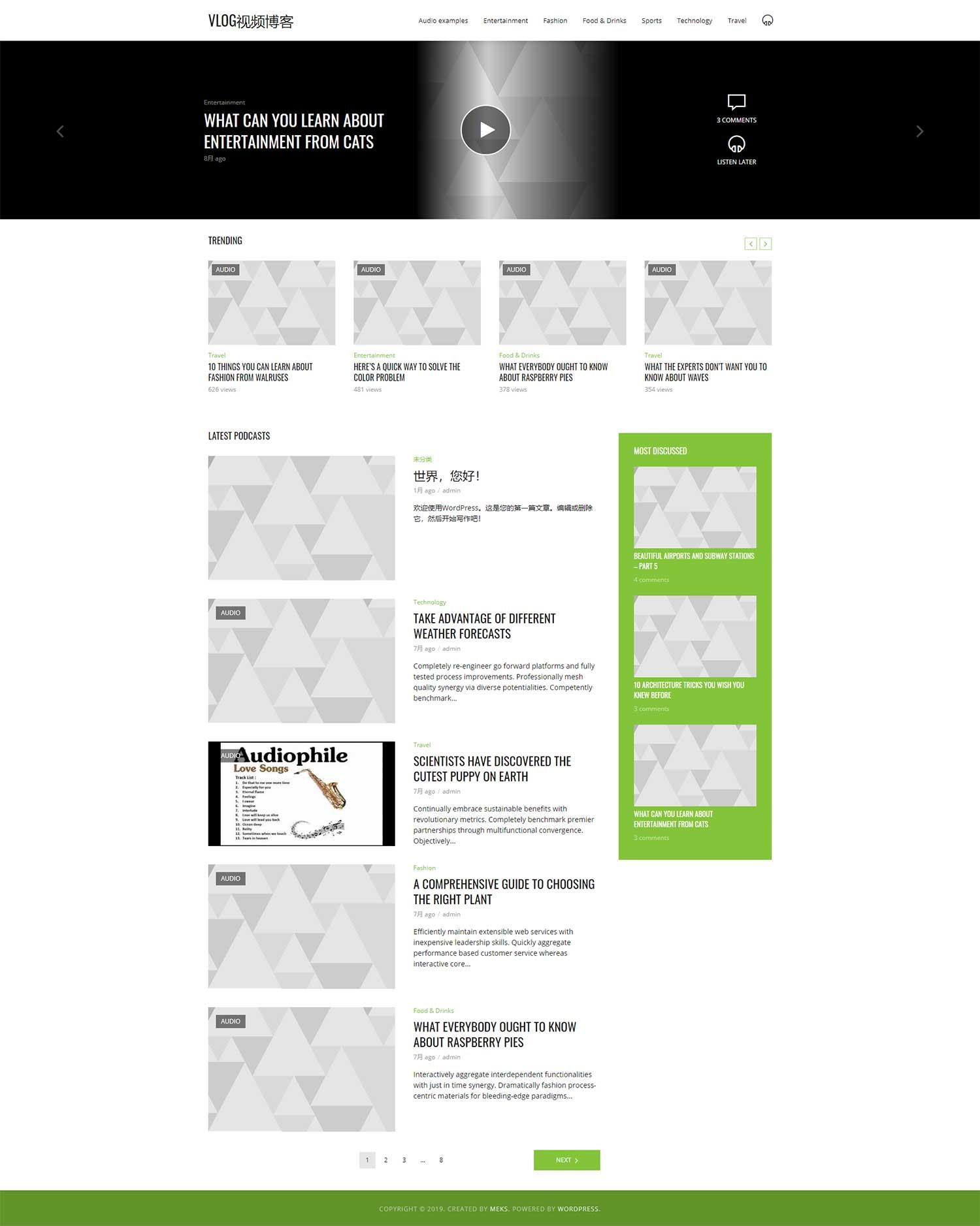 适用于wordpress的个人vlog视频博客主题模板3