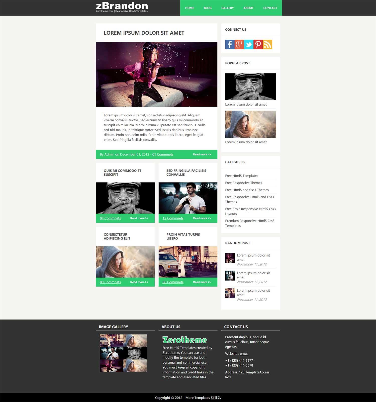 纯色扁平化简洁图片个人响应式摄影博客html5网页模板