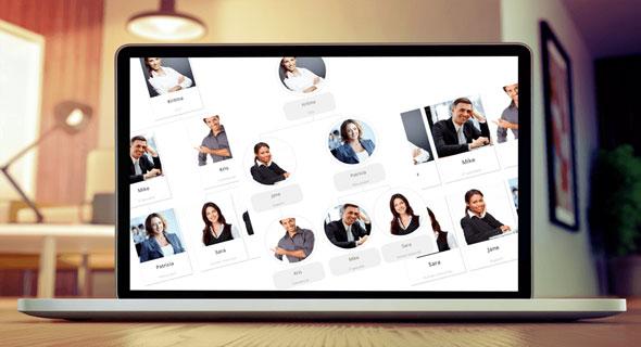 WP Team Display - 团队成员组织结构图WordPress插件-创客云