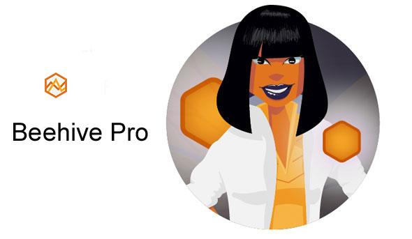 Beehive Pro - WordPress Plugin 网站流量分析插件-创客云