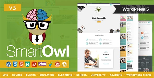SmartOWL - LMS 培训教育 WordPress 主题 + RTL-创客云