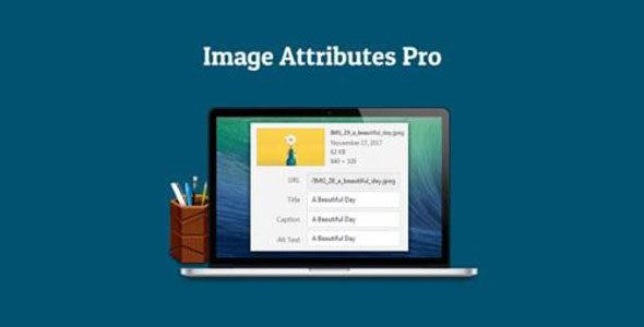 Auto Image Attributes Pro - 媒体库批量重命名WordPress插件-创客云