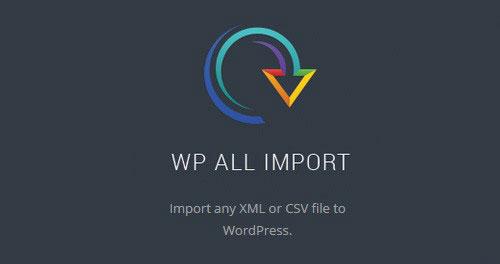WP All Import Pro 数据导入插件专业版 – v4.6.4