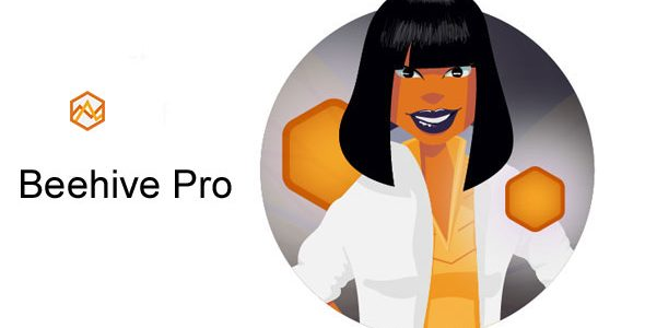 Beehive Pro – WordPress Plugin 网站流量分析插件 – v3.2.8