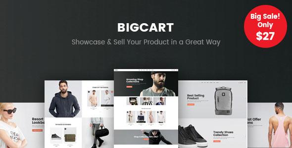 Bigcart – 简约现代WooCommerce主题 – v1.2.0