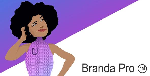 Branda Pro – WordPress维护模式标识LOGO管理插件 – v3.3.2