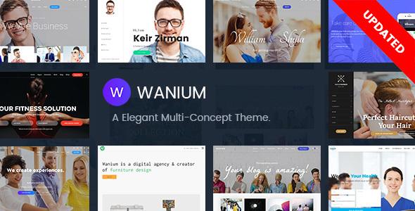 Wanium – 优雅多用途WordPress主题 – v1.6.6