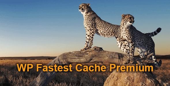 WP Fastest Cache Premium 快速缓存WordPress插件 – v1.5.9