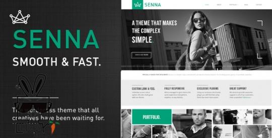 Senna 作品/博客 wordpress主题模板 – v1.3