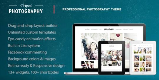 Tripod 摄影图片展示 WordPress汉化主题 v4.3