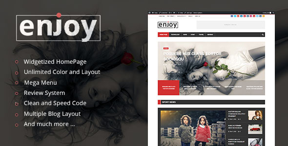 Enjoy 博客杂志 WordPress主题